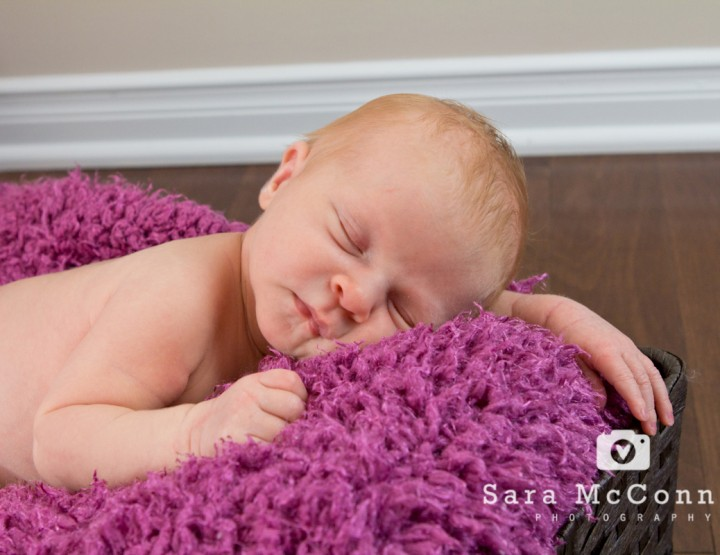{Newborn Session} 12 Days New - Ottawa Newborn Photographer