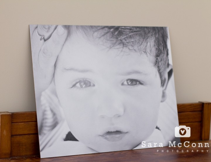 {Contest} Print Enlargement - Ottawa Photographer