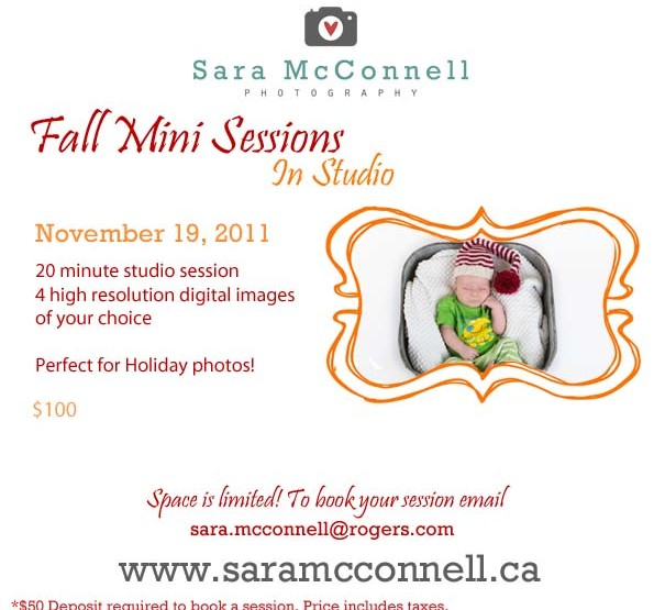 Studio Mini Sessions ~ Ottawa Family Photographer