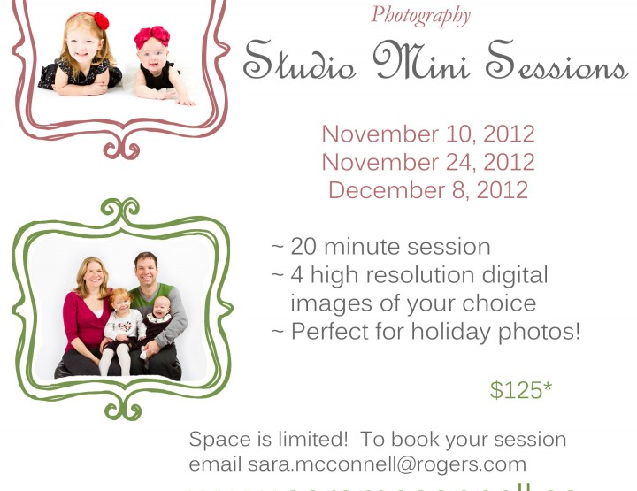 Studio Mini Sessions ~ Ottawa Photographer
