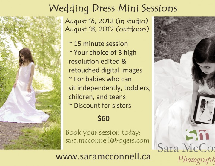 Wedding Dress Mini Sessions ~ Ottawa Child Photographer