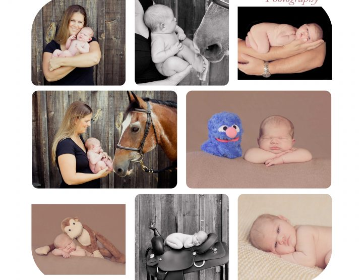 A girl and her horse ~ Ottawa Newborn Photographer
