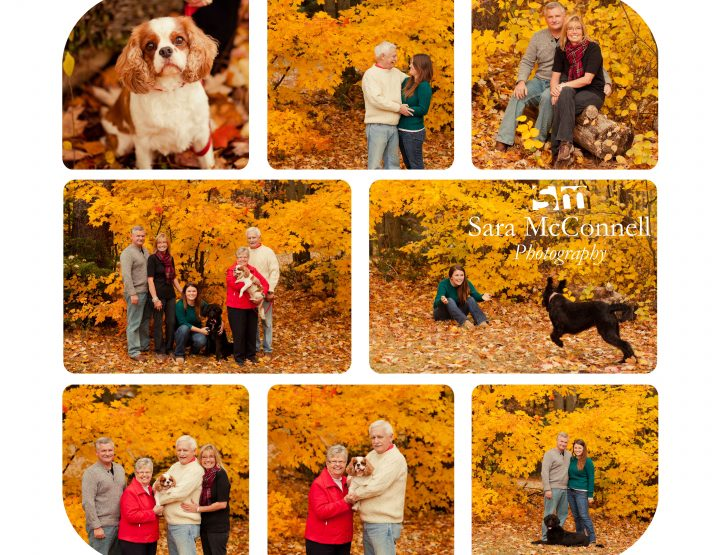 Four legged fun ~ Ottawa Family Photographer
