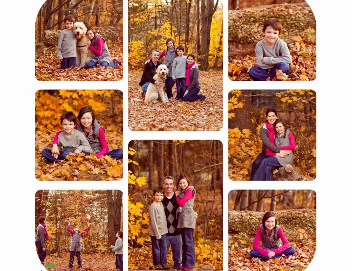 At the park ~ Ottawa Family Photographer