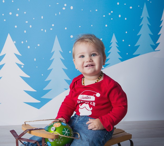 Christmas is Coming ~ Ottawa Family Photographer