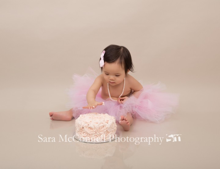 First birthday celebration ~ Ottawa Baby Photographer