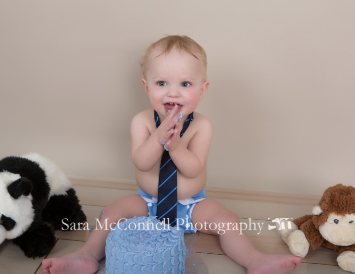 Let them smash cake ~ Ottawa Baby Photographer