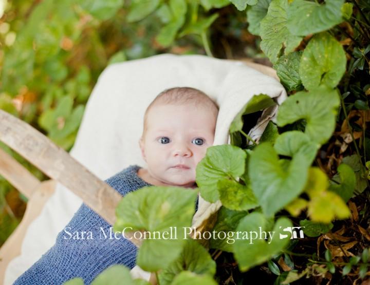 Two weeks new ~ Ottawa Newborn Photographer
