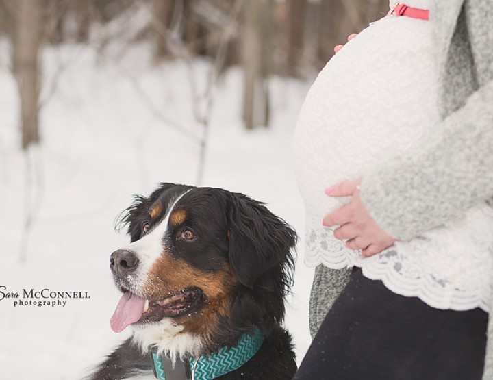 Awaiting Spring ~ Ottawa Maternity Photographer