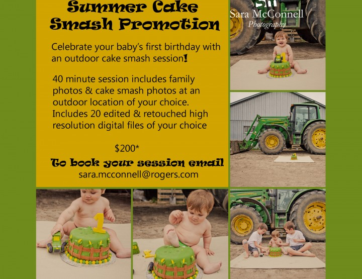Cake Smash Photos ~ Ottawa Baby Photographer