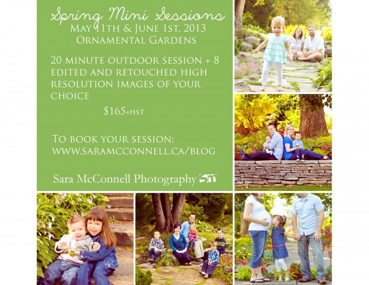 Spring Mini Sessions ~ Ottawa Family Photographer