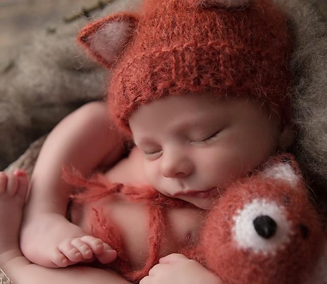 Ottawa Newborn Photographer   How does the fox sleep?