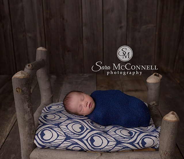 Ottawa Newborn Photographer | Styled