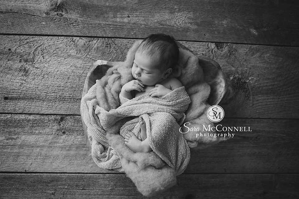 ottawa newborn photographer (1)