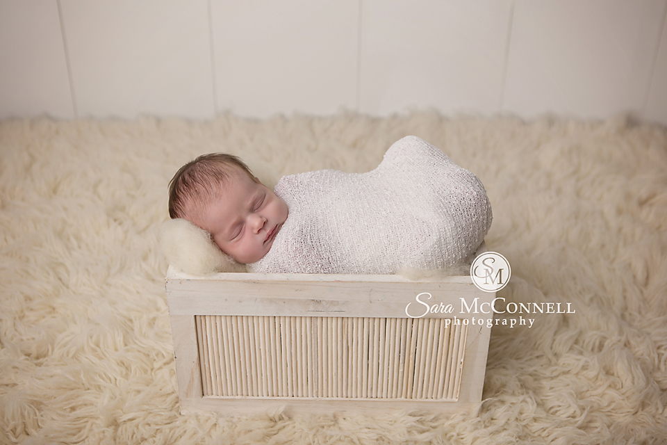 ottawa newborn photographer (3)