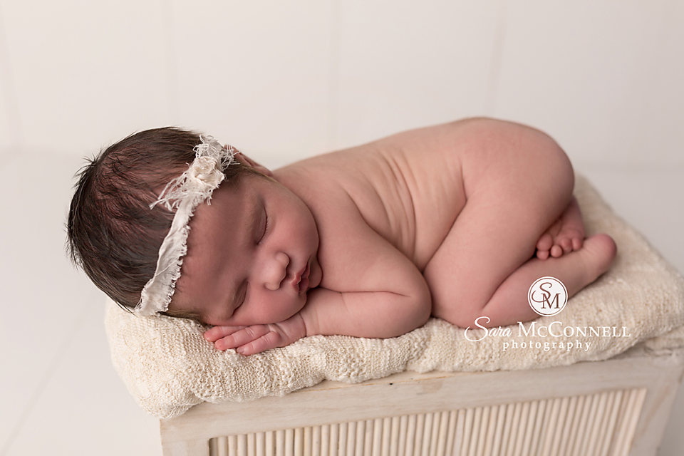 ottawa mini newborn sessions