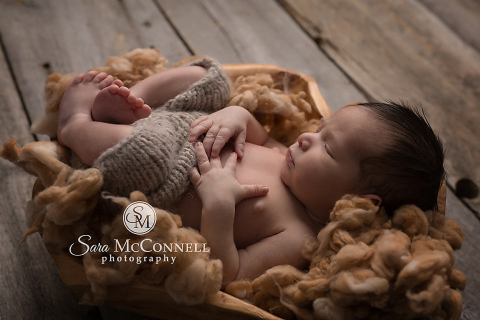 ottawa newborn photographer (2)