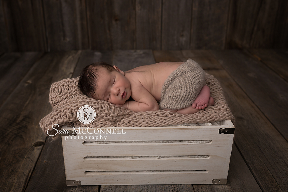 ottawa newborn photographer (5)