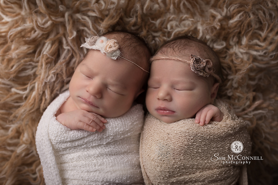 Ottawa newborn photos twins (5)