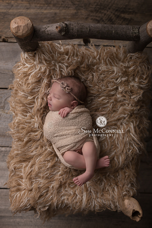 Ottawa newborn photos twins (7)
