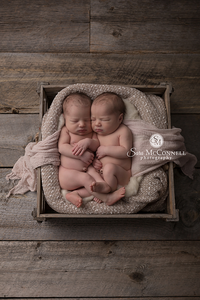 Ottawa newborn photos twins (9)
