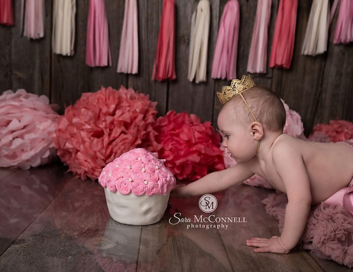 Ottawa Cake Smash Photos | Crown and Tutu