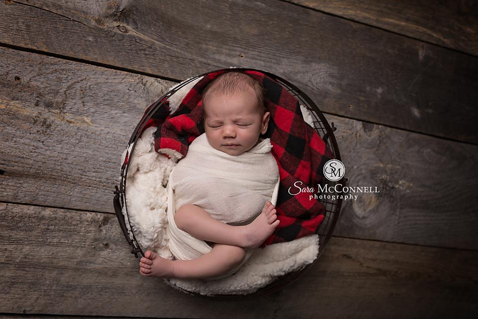 ottawa newborn photographer (7)