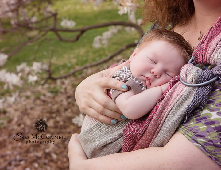 Ottawa Family Photographer | Spring Blossoms