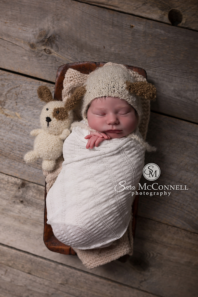 ottawa newborn photography  (17)