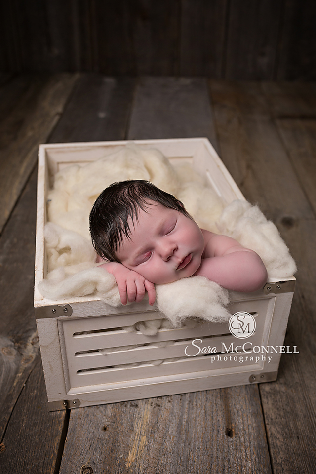 ottawa newborn photography  (8)