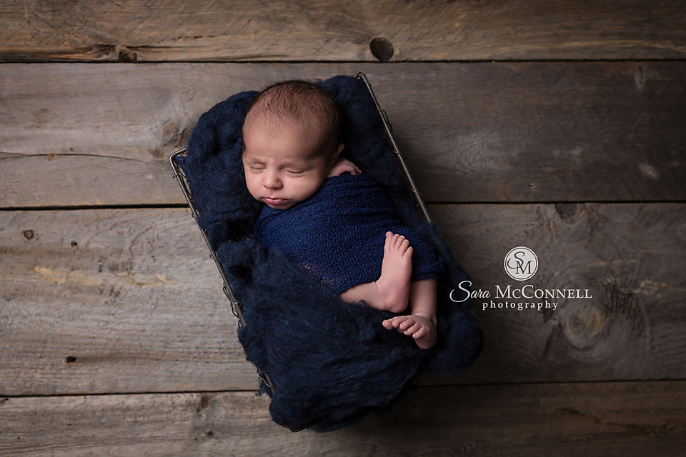 ottawa newborn photographer (12)