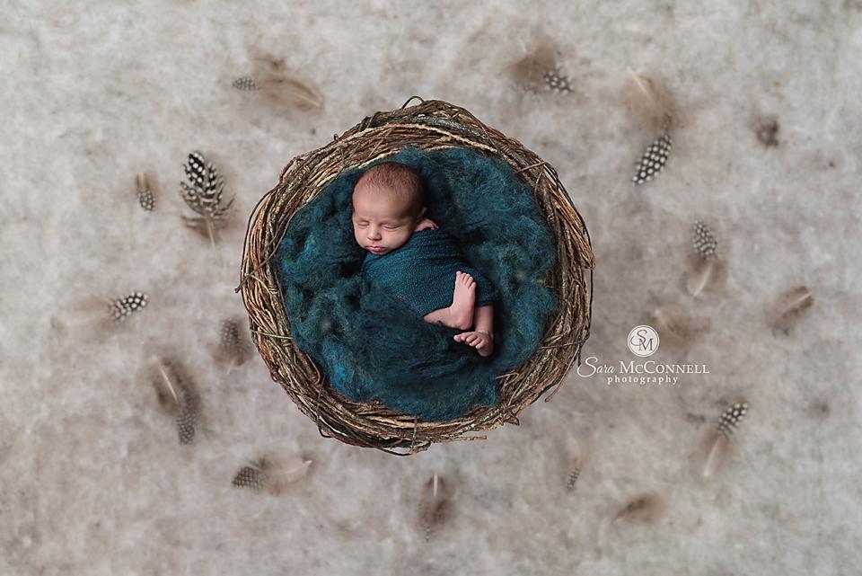 ottawa newborn photographer (14)