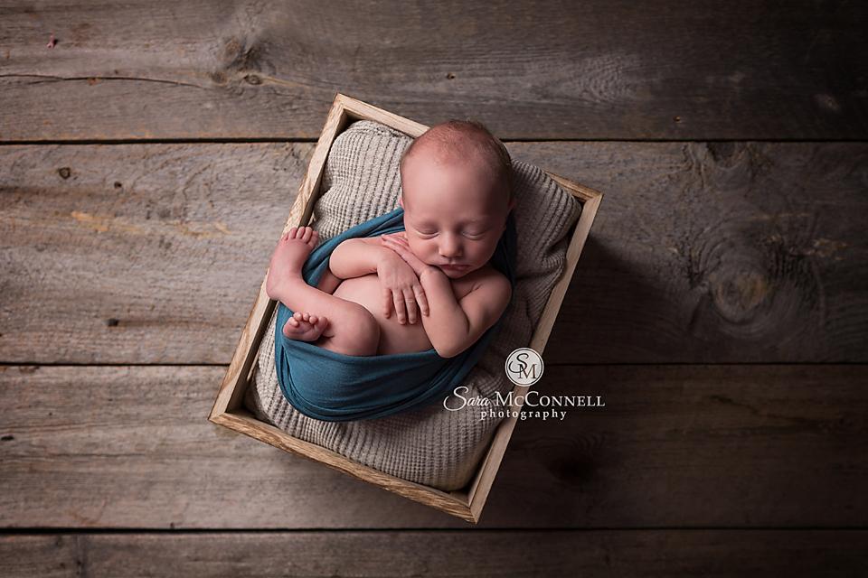 ottawa newborn photographer (23)