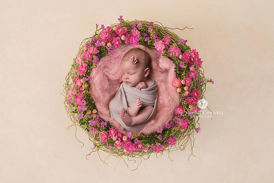 ottawa newborn photographer (16)