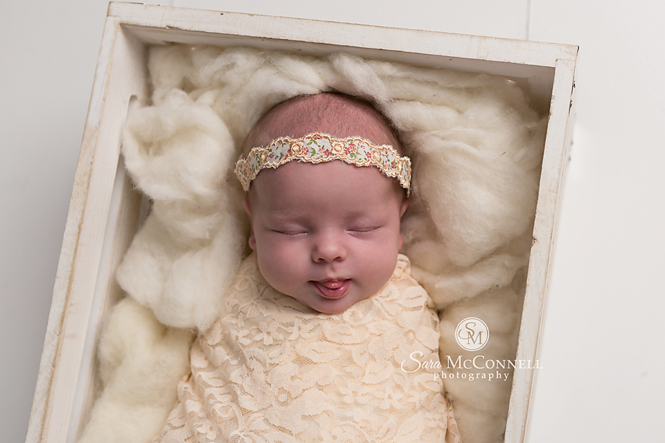 ottawa newborn photographer (6)
