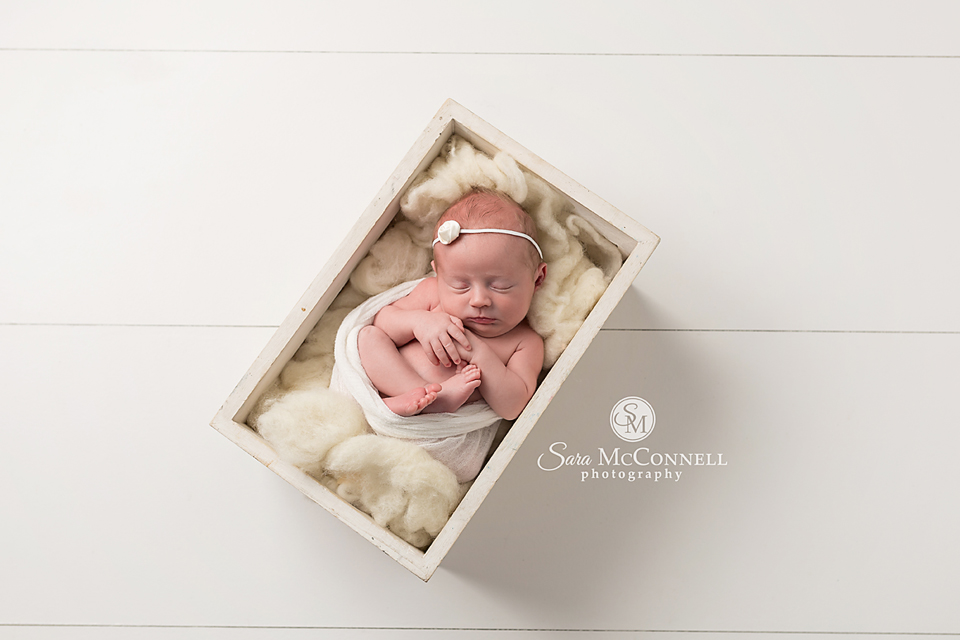 ottawa newborn photographer (7)
