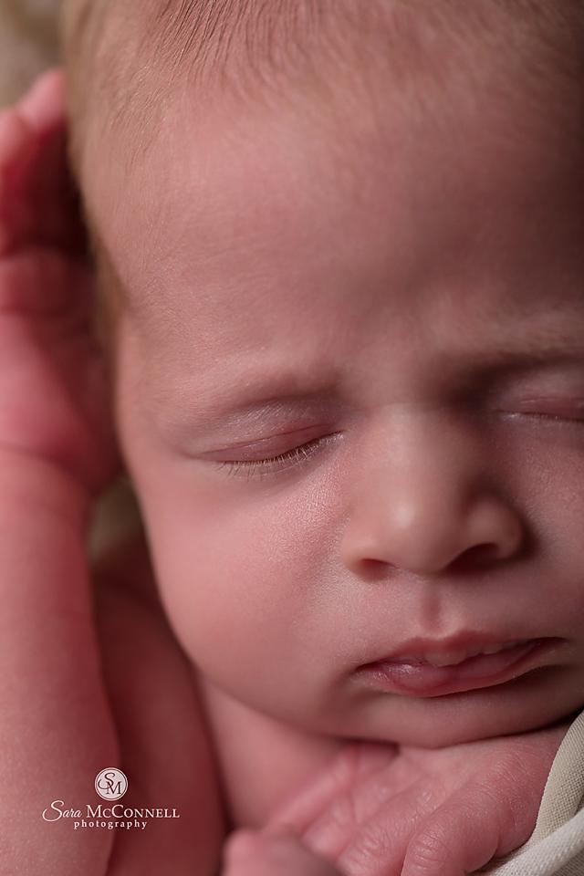 ottawa newborn photographer (9)