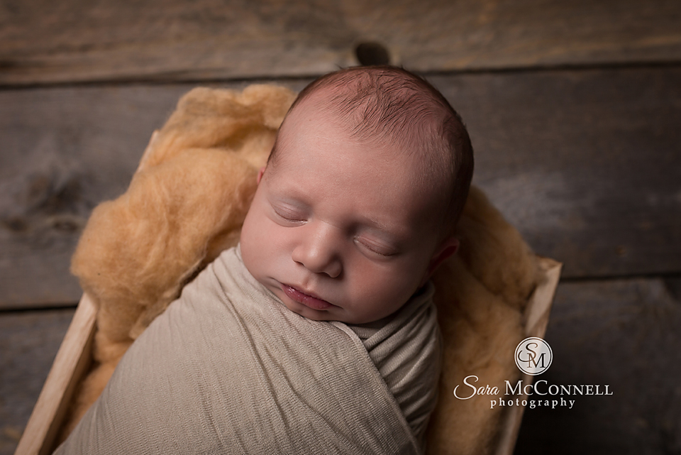 ottawa newborn photography (9)