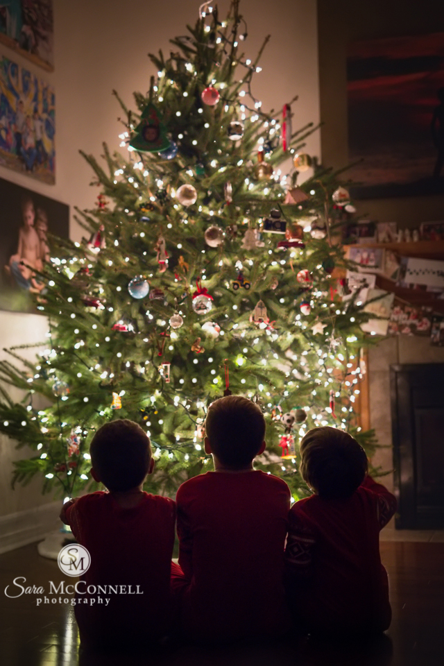 brothers looking at the Christmas tree