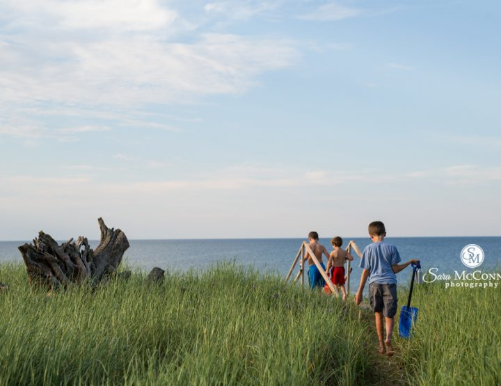 A vacation challenge   Ottawa Photographer
