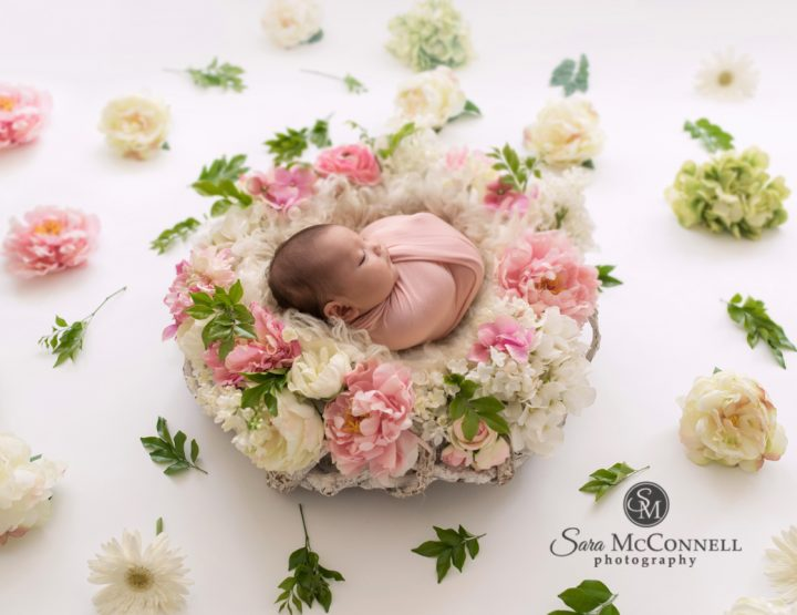 Ottawa Newborn Photographer | Welcoming
