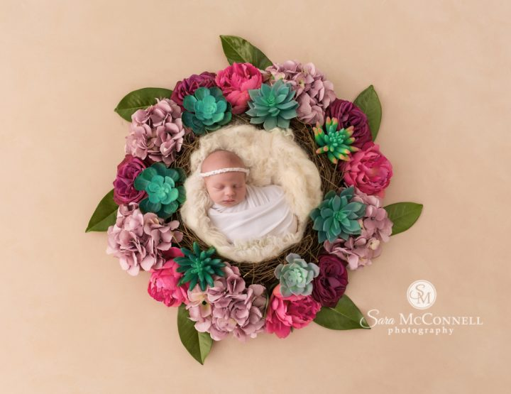 Ottawa Newborn Photography | Colours
