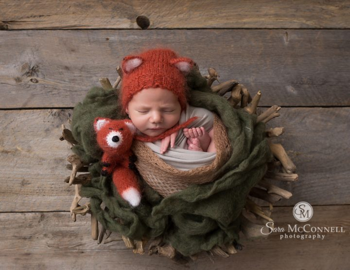 Ottawa Newborn Photographer | Nestled Fox