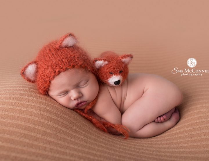 Ottawa Newborn Photographer | Little Fox