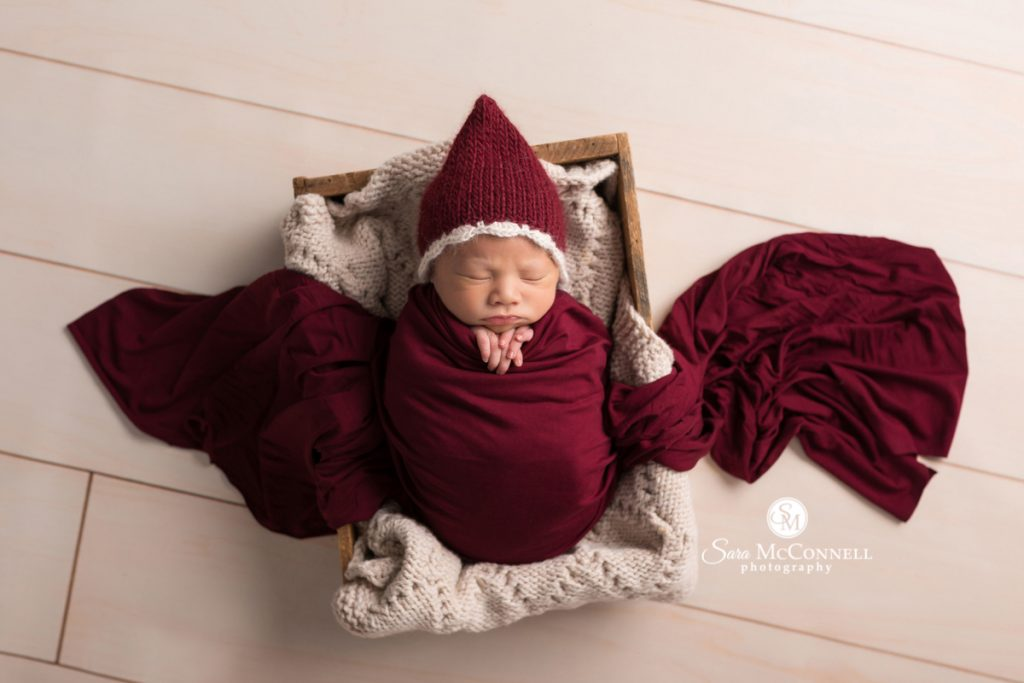 ottawa newborn photos