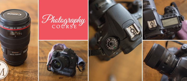 Learn to Use Your Camera Courses | Ottawa Photography