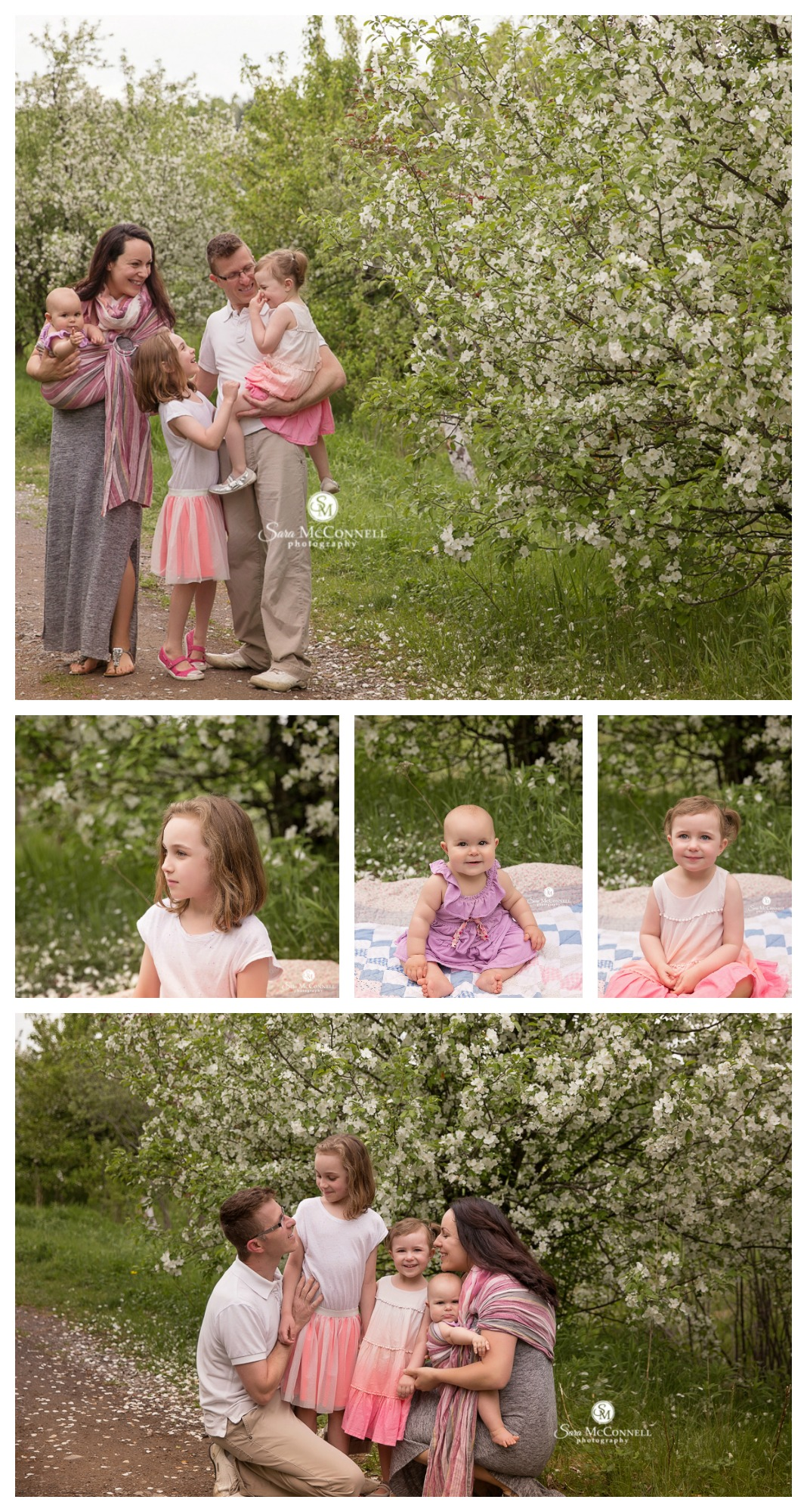 ottawa family photos in the spring blossoms