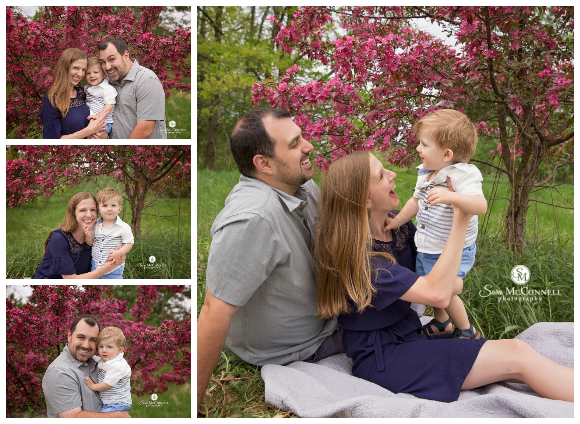 Ottawa Spring Blossom Photo Sessions by Sara McConnell Photography