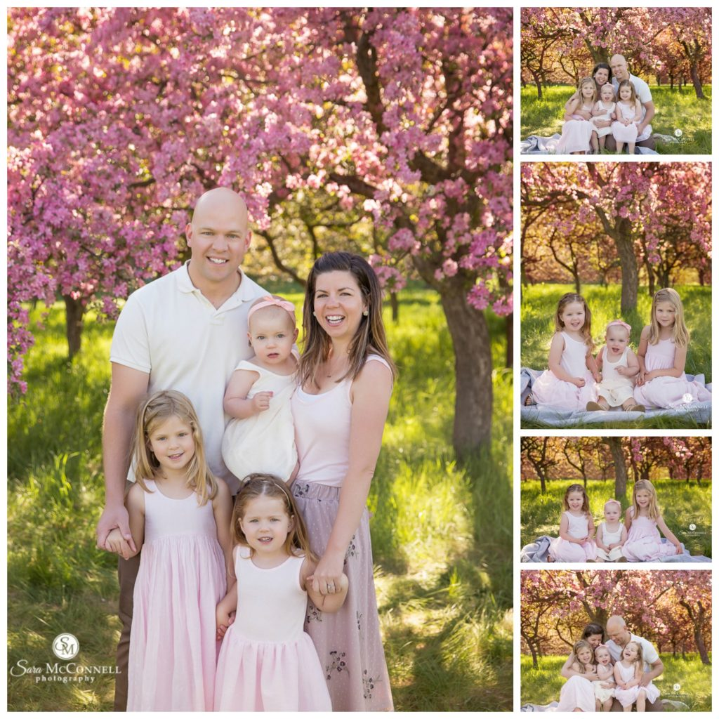 family in front of blossoming tree during ottawa family photo session