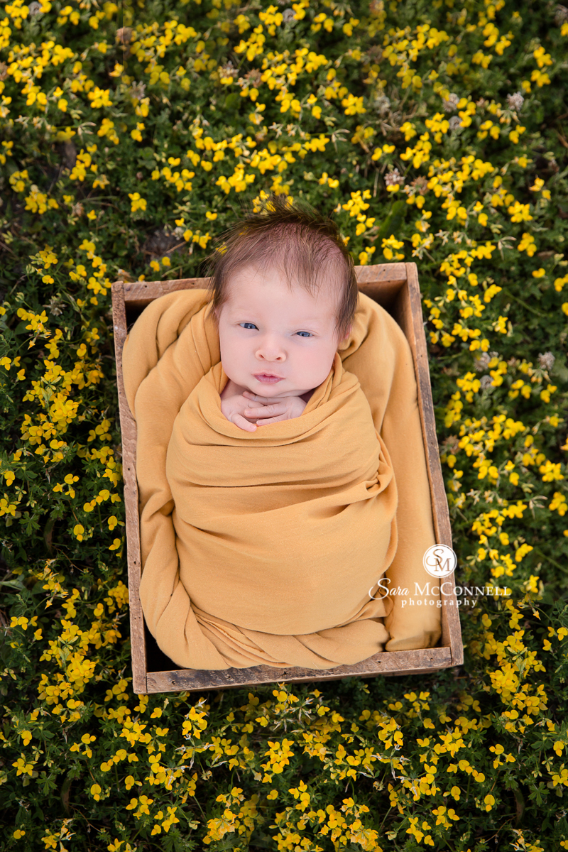 Ottawa newborn photographer Sara McConnell Photography featuring outdoor photos